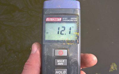 Watertemperatuur loopt op.